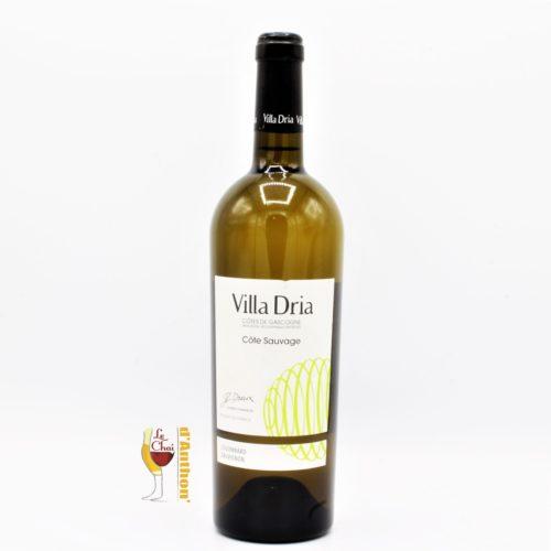 Vin Blanc Bouteille Sud Ouest Gascogne Sauvage Villa Dria 75cl