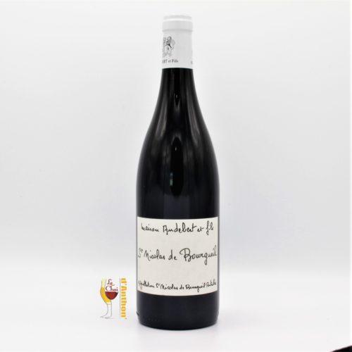 Vin Bouteille Rouge Loire St Nicolas De Bourgueil Audebert Et Fils 75cl